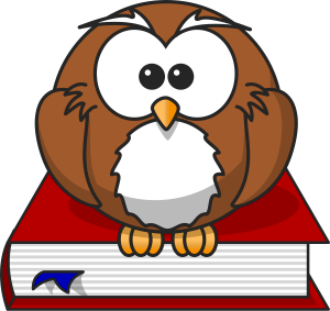 cartoon_owl_sitting_on_a_book_publicdomain